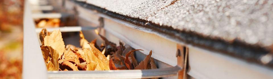 bladeren in de dakgoten
